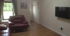 Modern, stylish living area